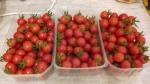 Propose des barquettes tomates cerises